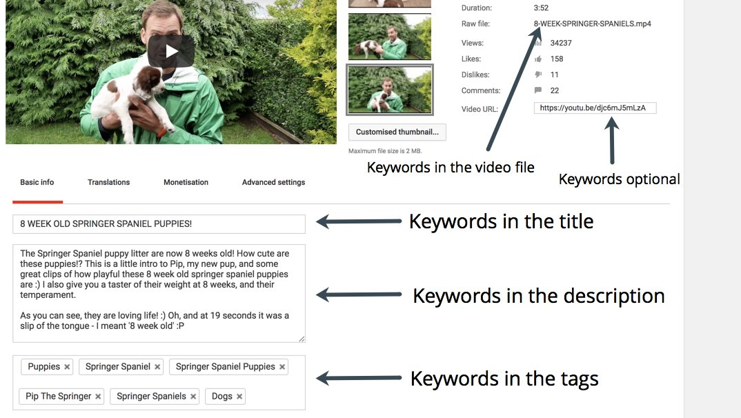 Using Keywords During Your YouTube Video Edit