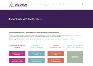 Web Design Healthcare - Triducive